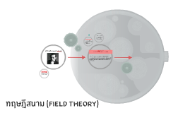 ทฤษฎีสนาม (Field Theory)