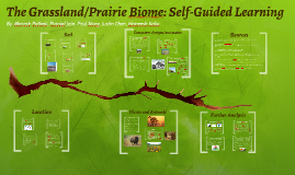 The Grassland/Prarie Biome: Soil Project