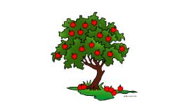 Copy of Apple Tree