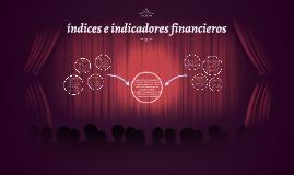 Copy of índices e indicadores financieros