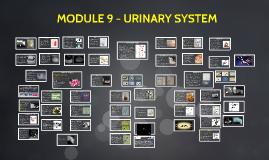 MODULE 9 - URINARY