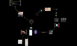 Developing a PLN