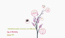 Copy of Administración de Cartera de Clientes-CCU