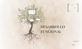 DESARROLLO FUNCIONAL
