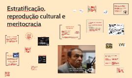 Reprodução cultural (2016)