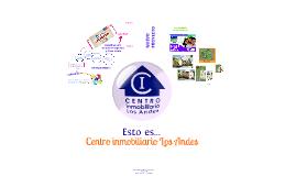 Copy of Centro Inmobiliario Los Andes