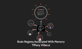 Brain Regions Associated With Memory