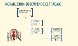 NORMA 2300 - DESEMPEÑO DEL TRABAJO