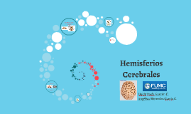 Copy of Hemisferios Cerebrales