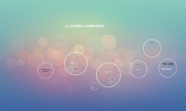Copy of CLEANING COMPANIES