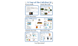AP Bio- Cells 3:  Structure & Support