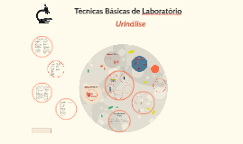 Copy of Urinálise
