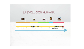 Copy of evolucion humana