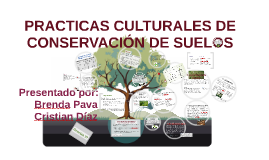 Copy of PRACTICAS CULTURALES DE CONSERVACION DE SUELOS
