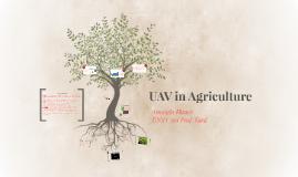 UAV in Agriculture