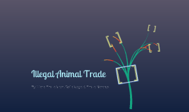 Illegal Animal Trade