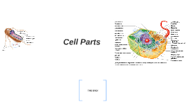 Cell Parts WY2014