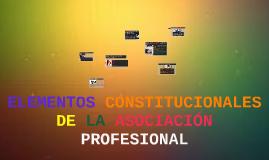 ELEMENTOS CONSTITUCIONALES DE LA ASOCIACIÓN PROFESIONAL