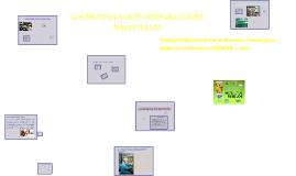 LOS PROTOCOLOS EN PREPARACIONES MAGISTRALES