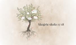 Skegrie skola 17/18