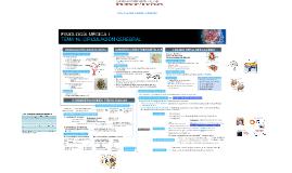 Fisiología Médica I: Circulación Cerebral
