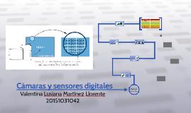Camaras y sensores digitales