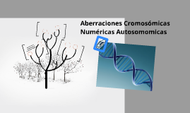Aberraciones Cromosomicas Numericas Autosomomicas