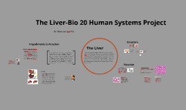Bio-20 Liver Human Systems Prodject