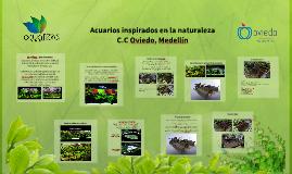 Acuaflora