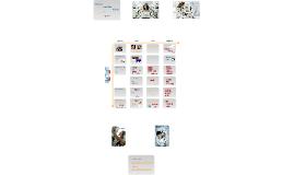 Recherche documentaire médicale 2014