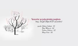 Copy of Konvertor sa jednostrukim nagibom