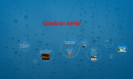 Vandens tarša
