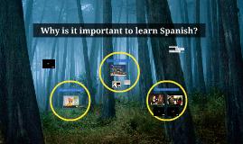 Why Spanish