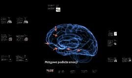 Mózgowe podłoże emocji