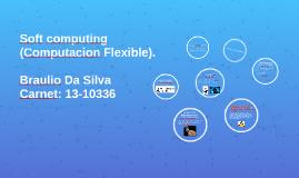 Copy of Soft computing (Computacion Flexible).