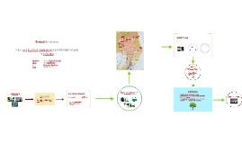 Estudi d'aspectes mediambientals en espais verds urbans de Cardedeu