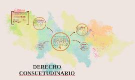 DERECHO CONSUETUDINARIO