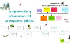 programación y preparación del presupuesto público