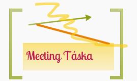 Meeting Táska