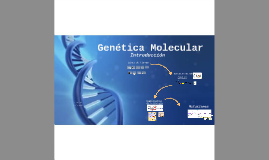 Genética Molecular - Introducción
