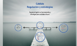 Copia de Copy of Cabildo. Regulación legal y estrategias