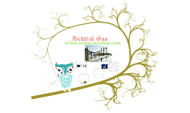 Copy of Alternative Energy: Natural Gas