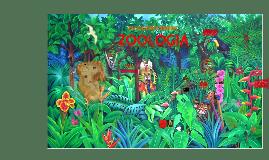 Zoologia_resumo