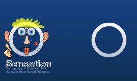 Copy of Copy of Sensation and Perception
