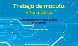 Trabajo de modulo: Informatica