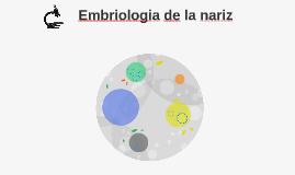 Embriologia de la nariz