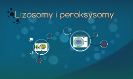 Lizosomy i peroksysomy