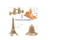 PATOLOGIAS EN MADERA