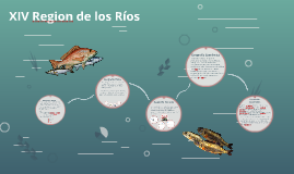 Region de los Ríos