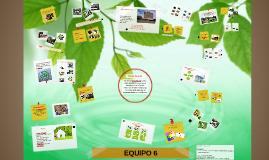 Exposición Construcción Sustentable